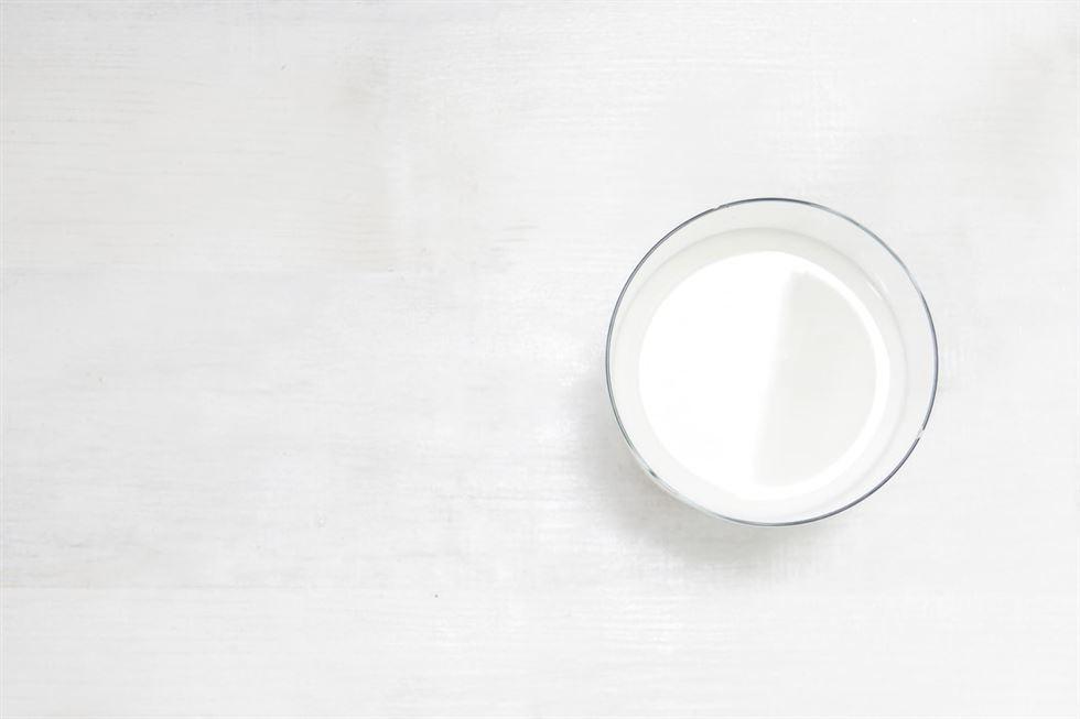 Gordura do leite e saúde: o que as evidências científicas recentes nos dizem?