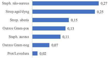Frequência de principais agentes causadores de mastite subclínica
